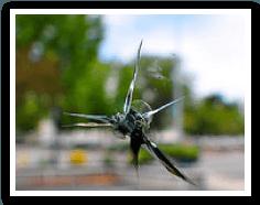 Spidered Windshield